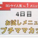 ヨシケイのお試しセット4日目