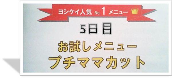 ヨシケイのお試しセット5日目